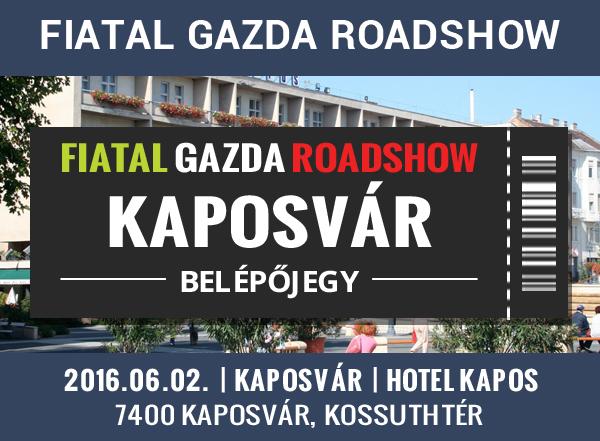 banner_kaposvar